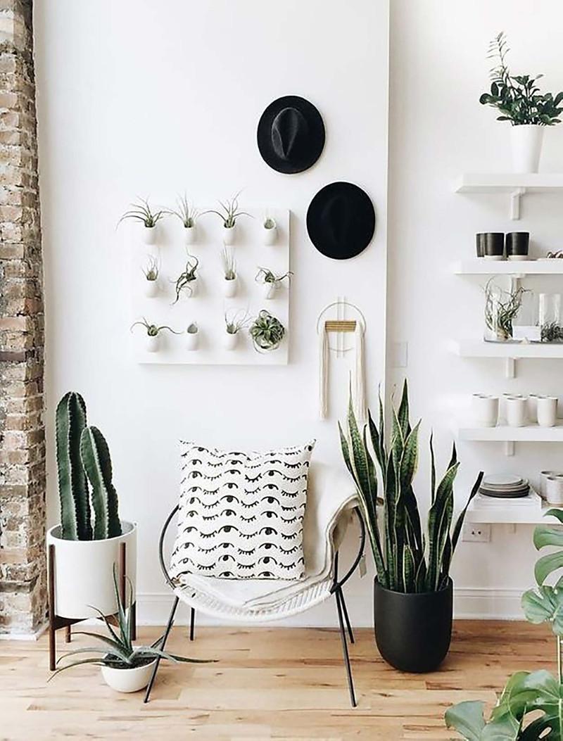 Home décor DIY ideas