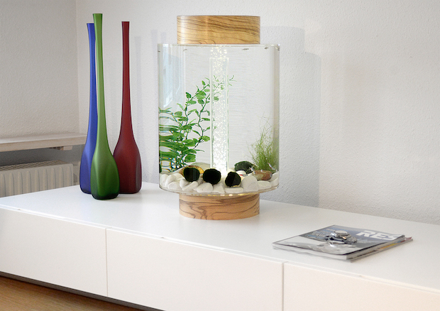 an-aquarium-with-a-scandinavian-design_norrom-aquarium-3 Scandinavian Design An Aquarium with a Scandinavian Design An Aquarium with a Scandinavian Design Norrom Aquarium 3