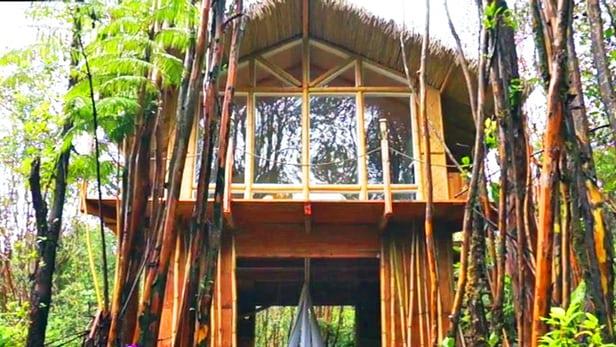 house-hawai-kristie-5 house Designer builds incredible self-sustaining house in Hawaii House hawai Kristie 5