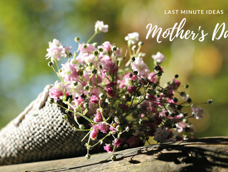 Last Minute Mother S Day Gift Ideas Inspirations Essential Home