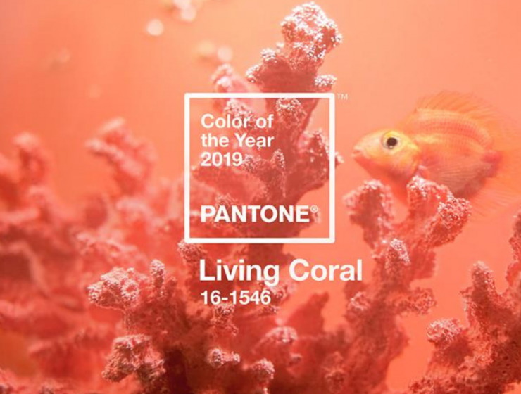 Introducing Pantone Color Of The Year 2019 Into Your Home Decor!_7 pantone color of the year 2019 Introducing Pantone Color Of The Year 2019 Into Your Home Decor! Introducing Pantone Color Of The Year 2019 Into Your Home Decor feat 740x560
