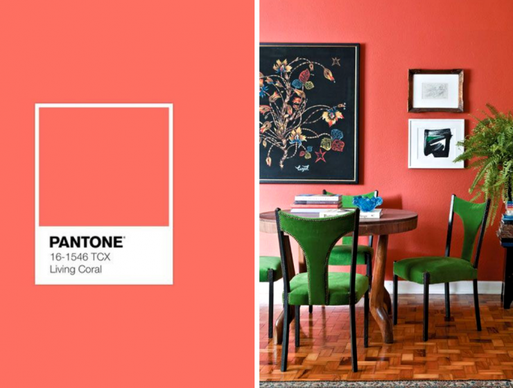 The Best Coral Home Decor Ideas You Never Knew You Needed_feat coral home decor The Best Coral Home Decor Ideas You Never Knew You Needed The Best Coral Home Decor Ideas You Never Knew You Needed feat 740x560