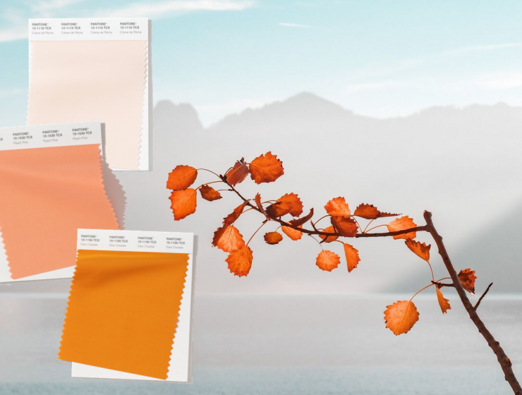 These Fall Color Trends Will Bring Warmth Into Your Home This Season fall color trends These Fall Color Trends Will Bring Warmth Into Your Home This Season Design sem nome 58 740x560